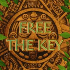 Free The Key – Puzzle – PLAY FREE